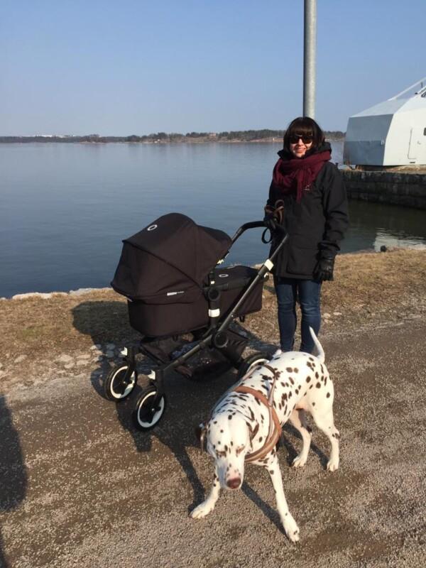 Vuoden 2021 kuntavaaliehdokas (Kokoomus) Anniina Iskanius ulkoilee Helsingissä lastenvaunuja työntäen. Mukana on koira.